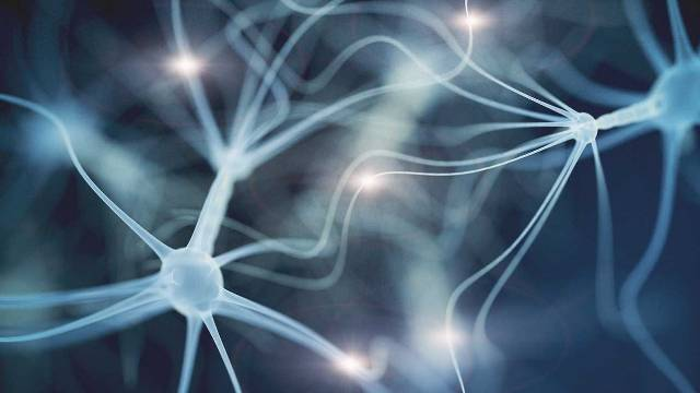 Τα στρεσογόνα γεγονότα επιταχύνουν τη γήρανση του εγκεφάλου